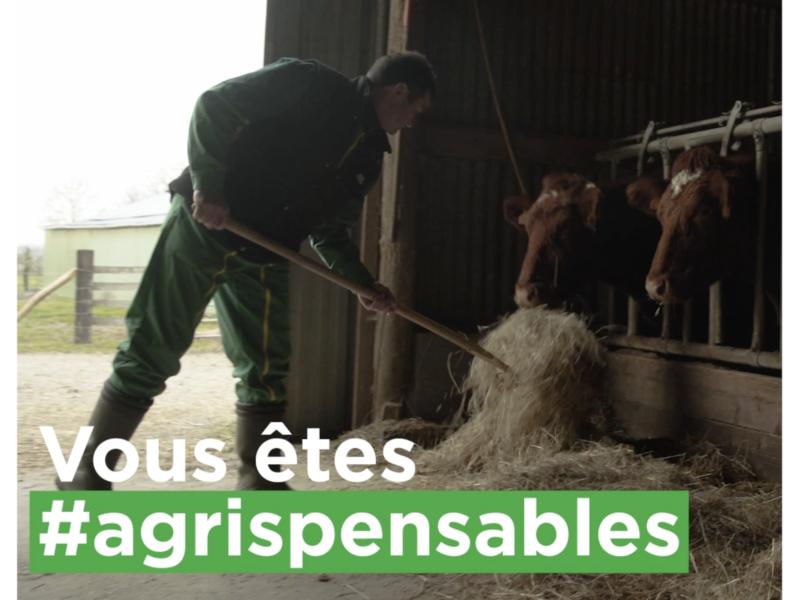 Groupama - #Agrispensables